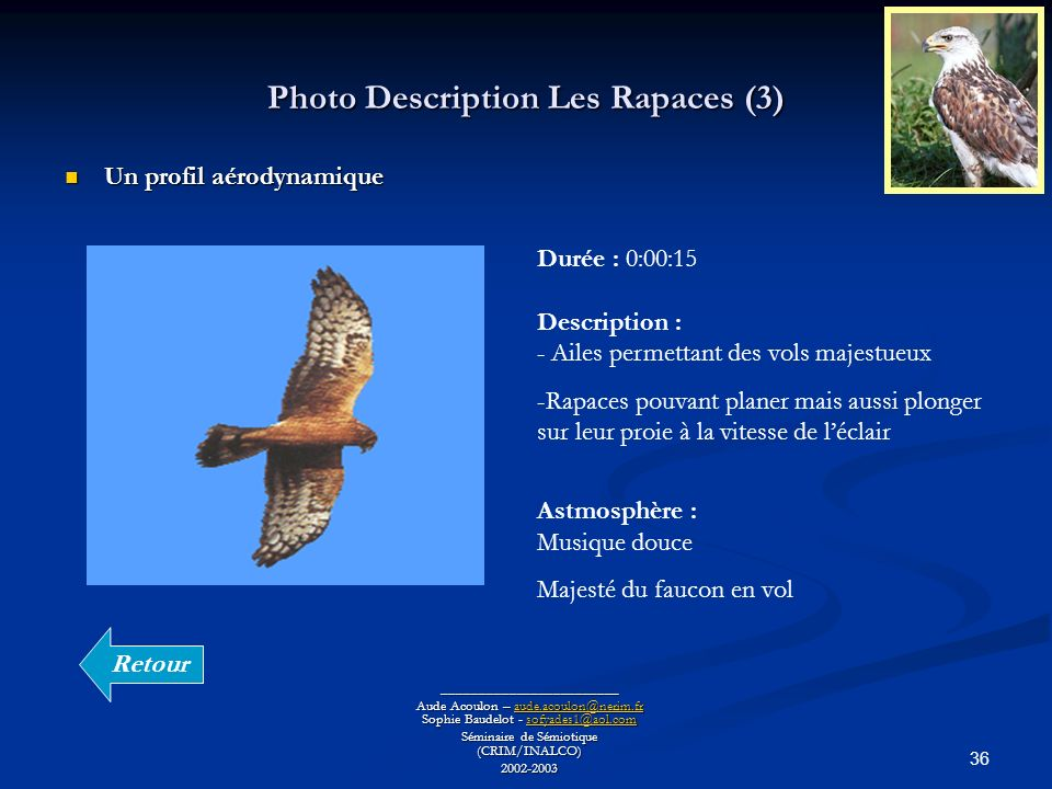 Photo Description Les Rapaces (3)