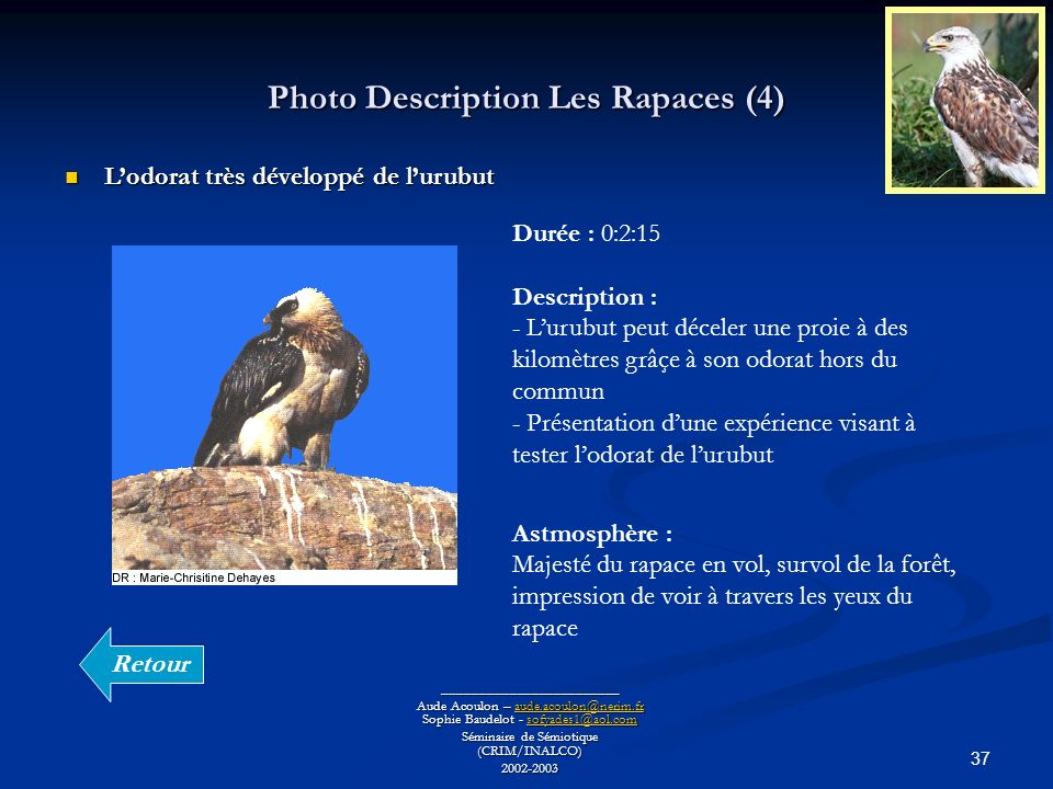 Photo Description Les Rapaces (4)