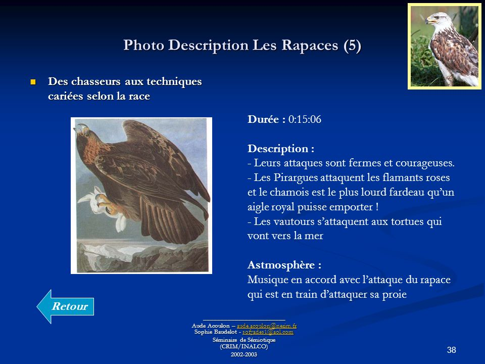 Photo Description Les Rapaces (5)