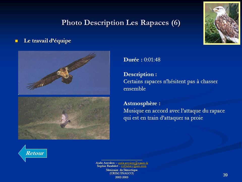 Photo Description Les Rapaces (6)
