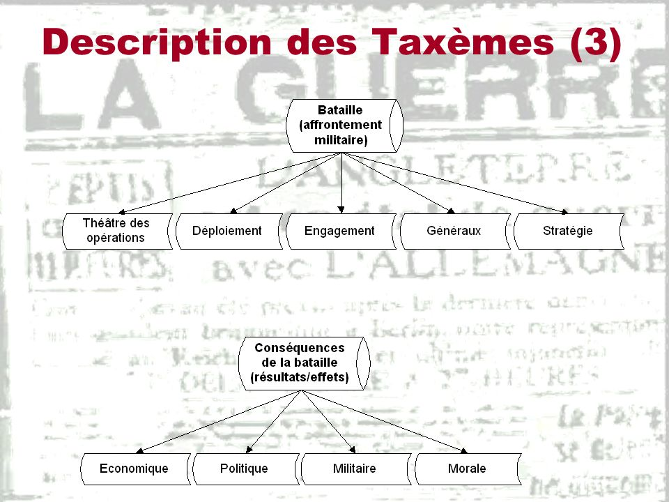 Description des Taxèmes (3)