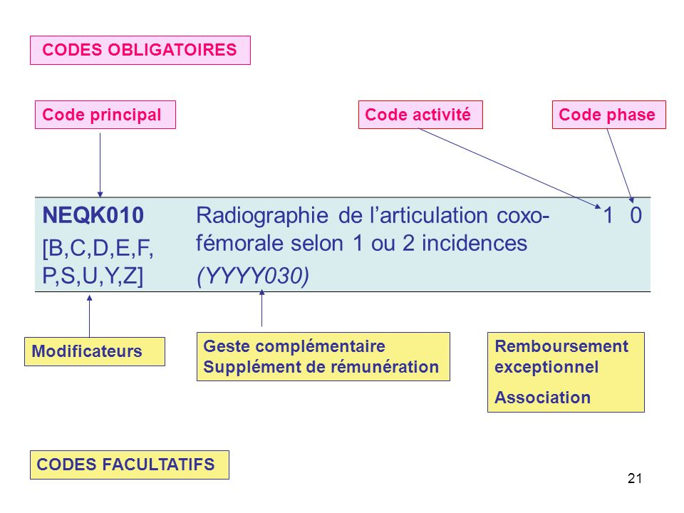 Radiographie de l'articulation coxo-fémorale selon 1 ou 2 incidences