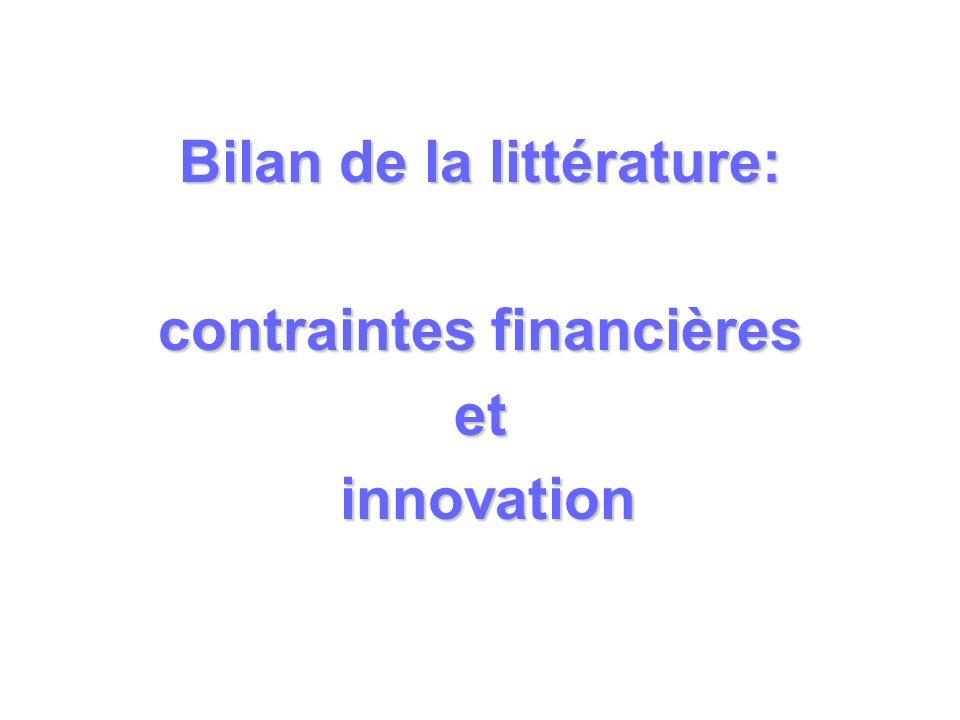 Bilan de la littérature: contraintes financières