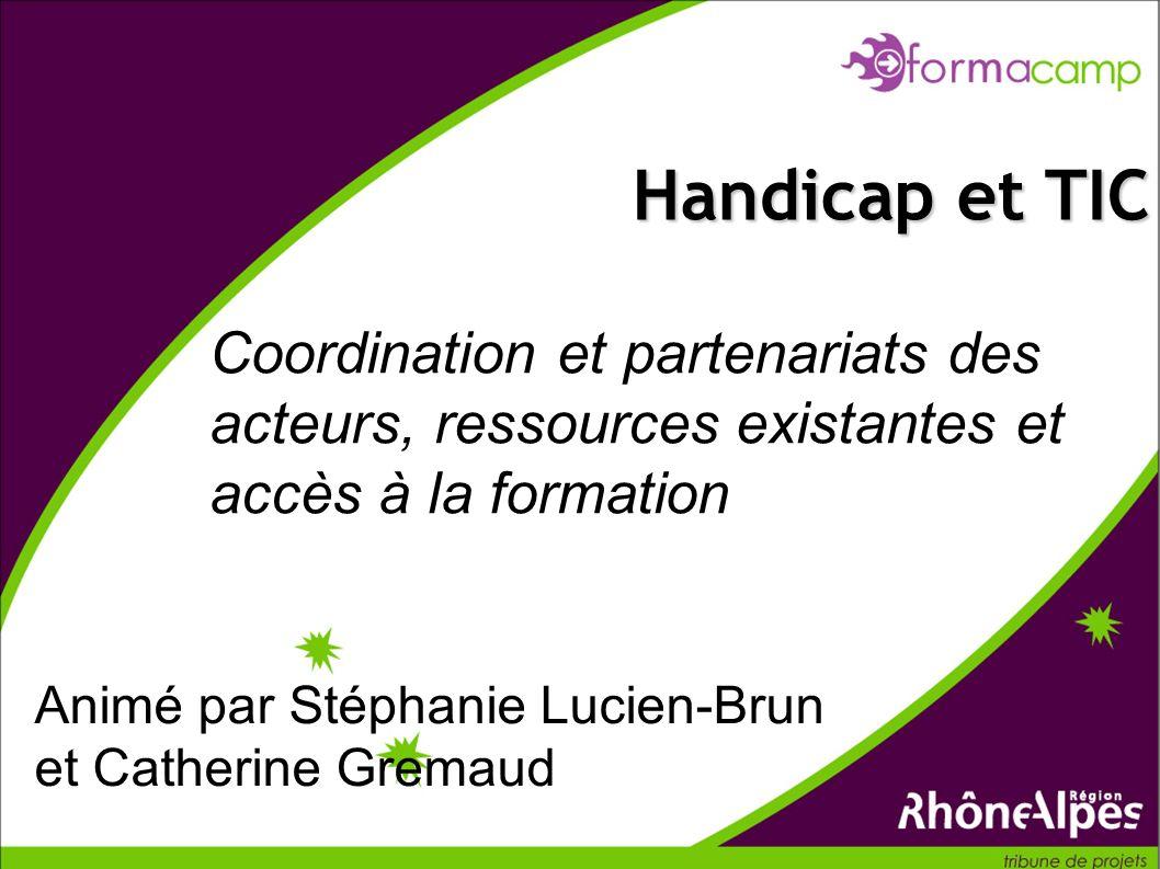 Handicap et TIC Coordination et partenariats des acteurs, ressources existantes et accès à la formation.