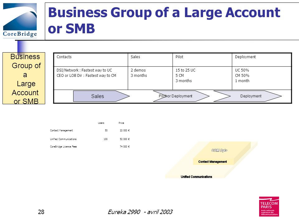 Business Group of a Large Account or SMB