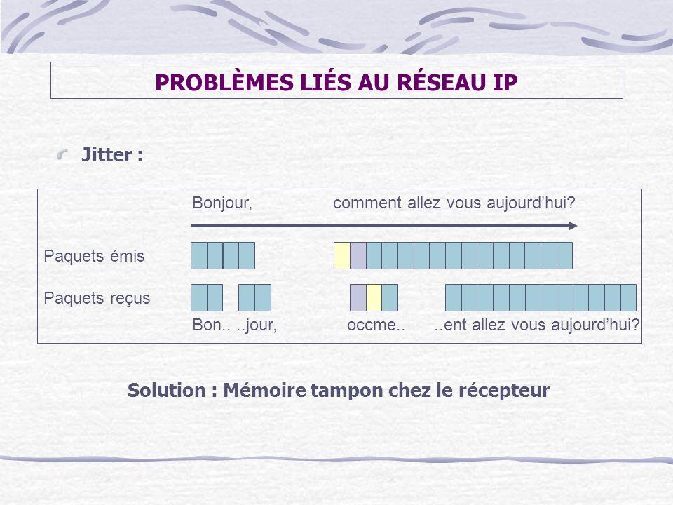 PROBLÈMES LIÉS AU RÉSEAU IP