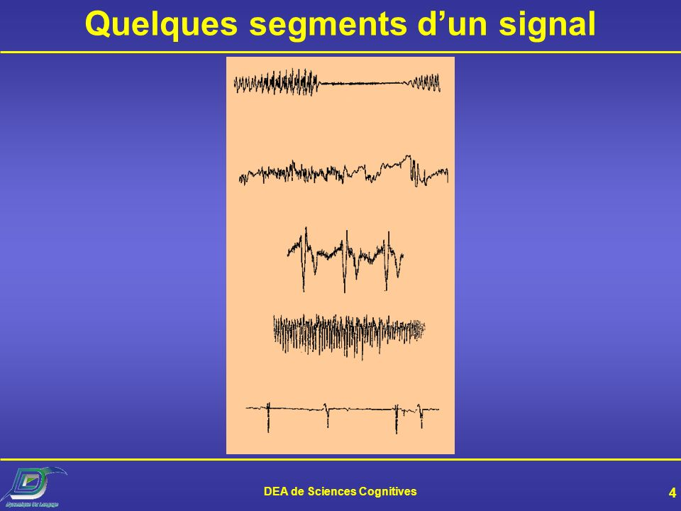 Quelques segments d'un signal DEA de Sciences Cognitives