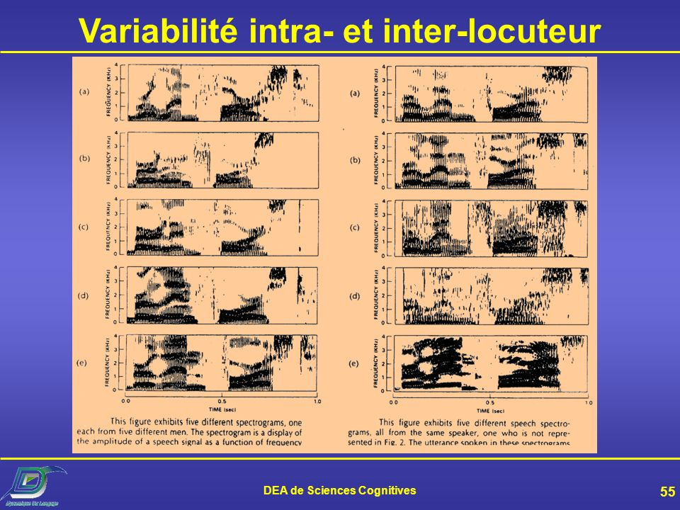 Variabilité intra- et inter-locuteur DEA de Sciences Cognitives