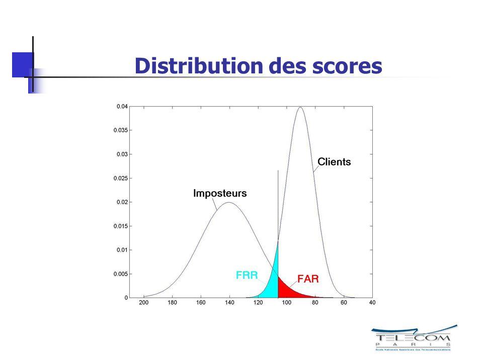 Distribution des scores