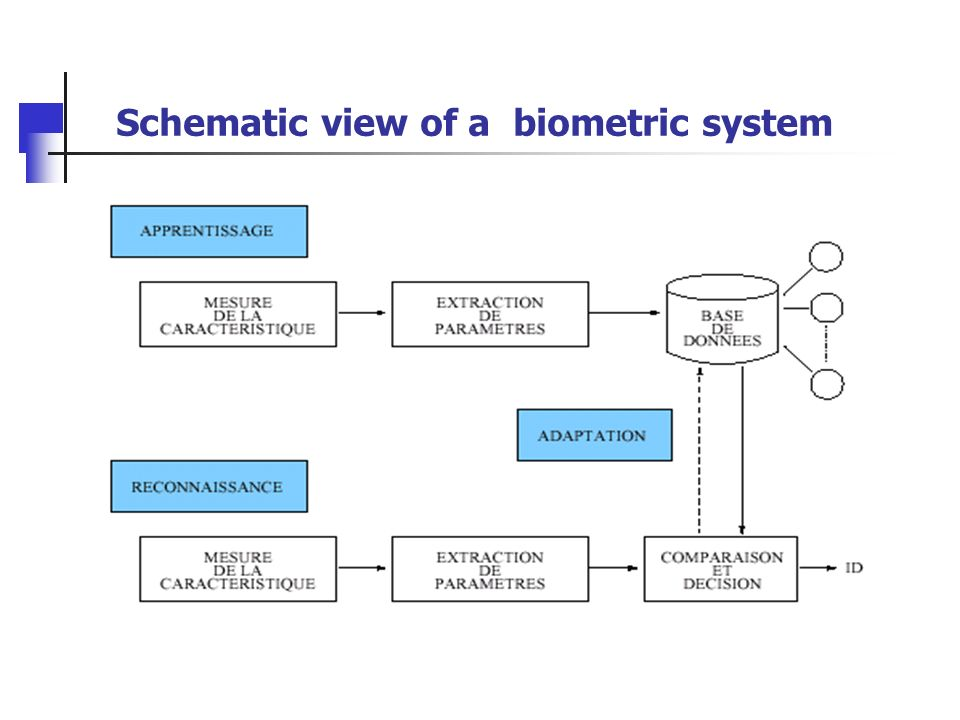 Schematic view of a biometric system