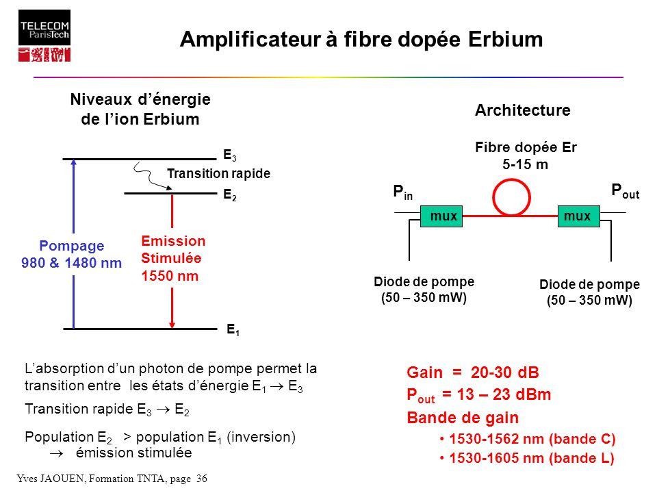 Amplificateur à fibre dopée Erbium