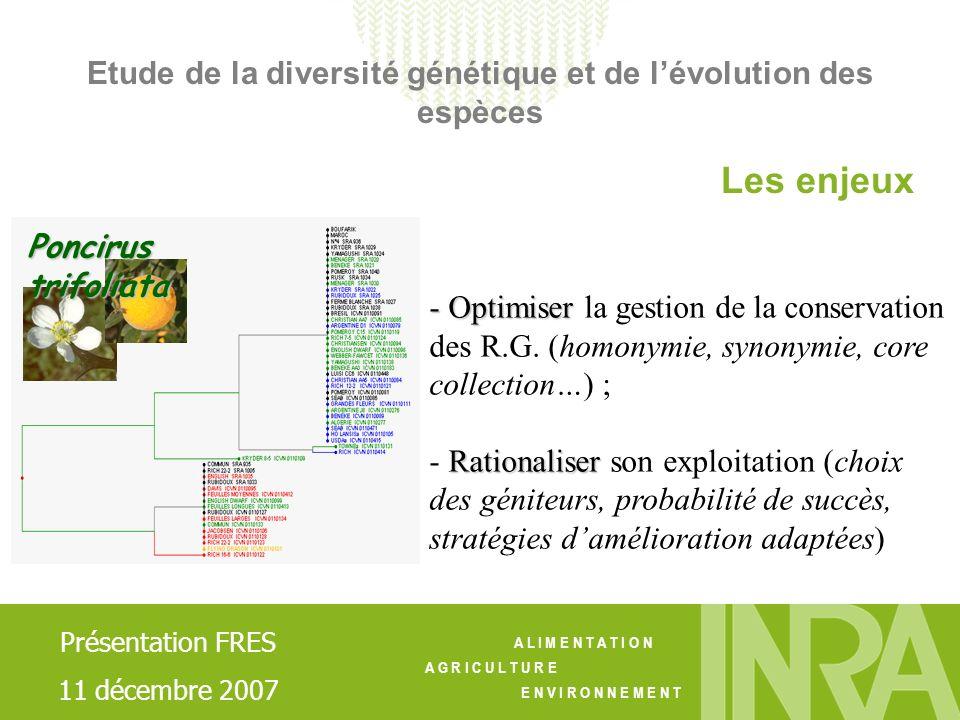 Etude de la diversité génétique et de l'évolution des espèces