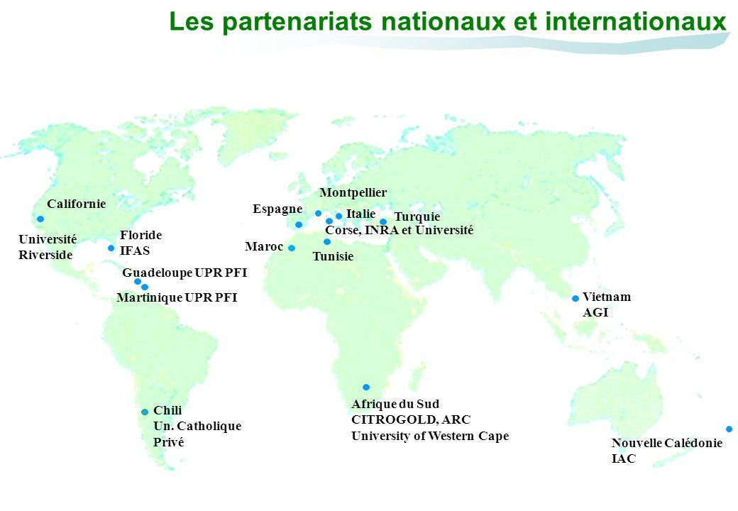 Les partenariats nationaux et internationaux