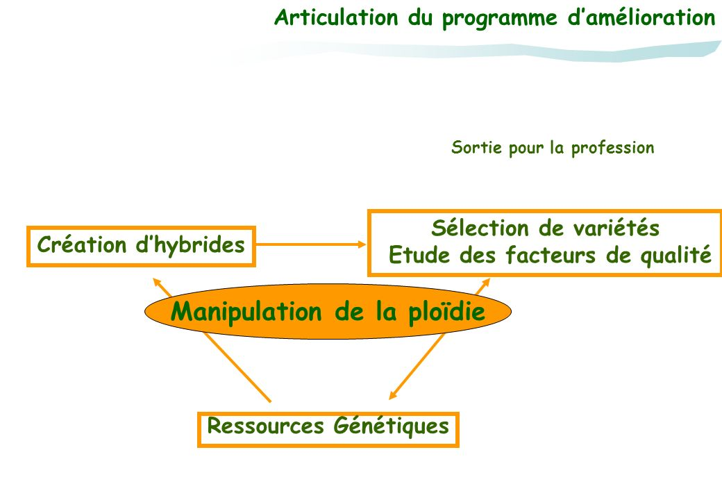 Manipulation de la ploïdie