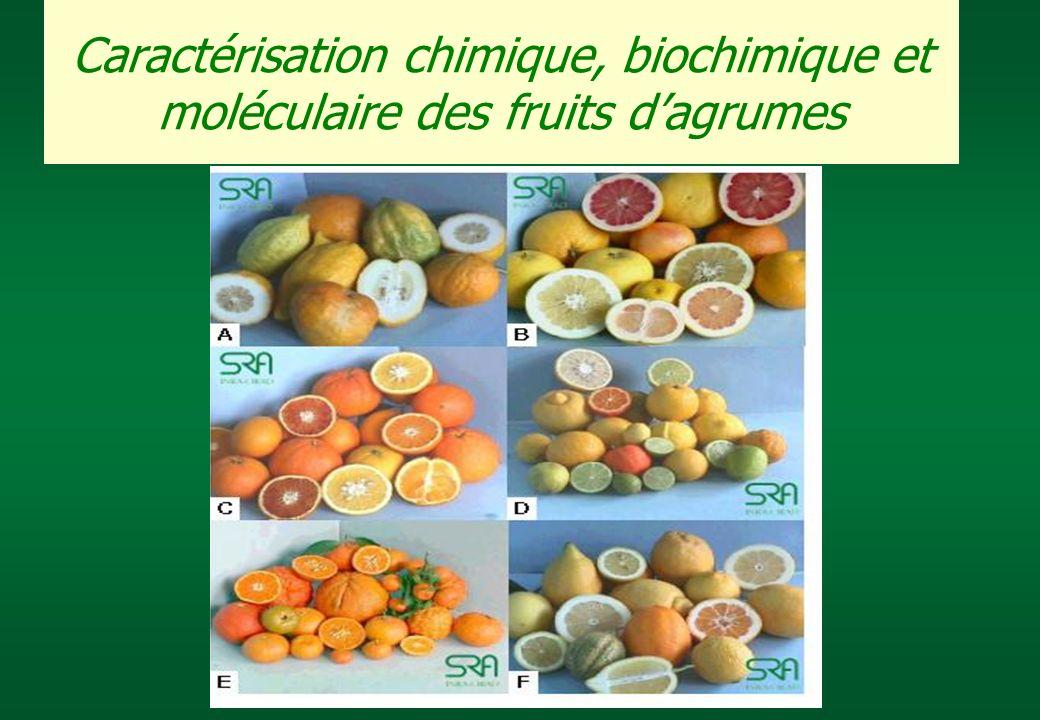 Caractérisation chimique, biochimique et moléculaire des fruits d'agrumes