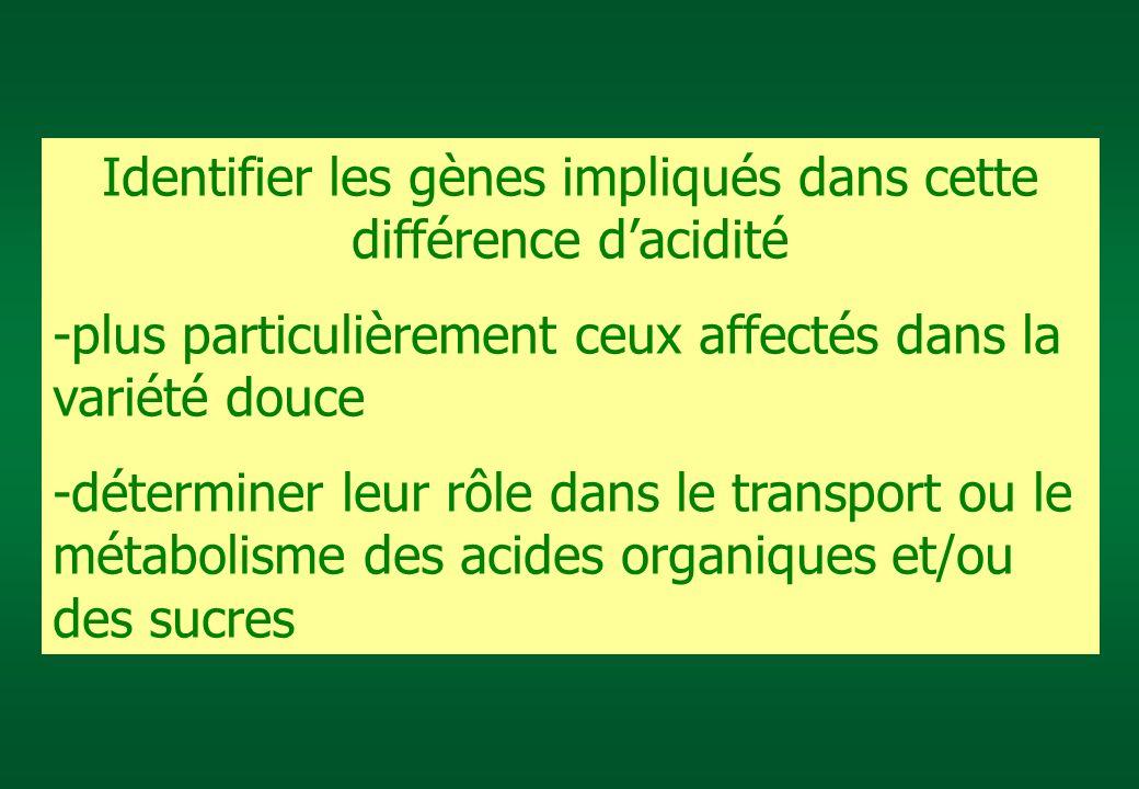 Identifier les gènes impliqués dans cette différence d'acidité
