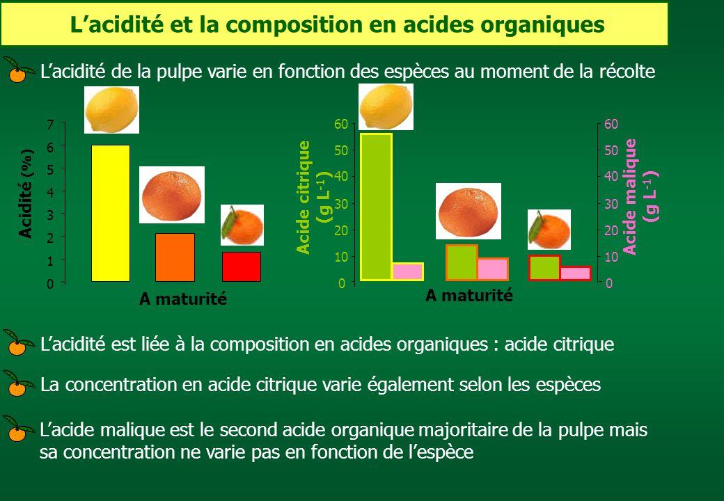 L'acidité et la composition en acides organiques