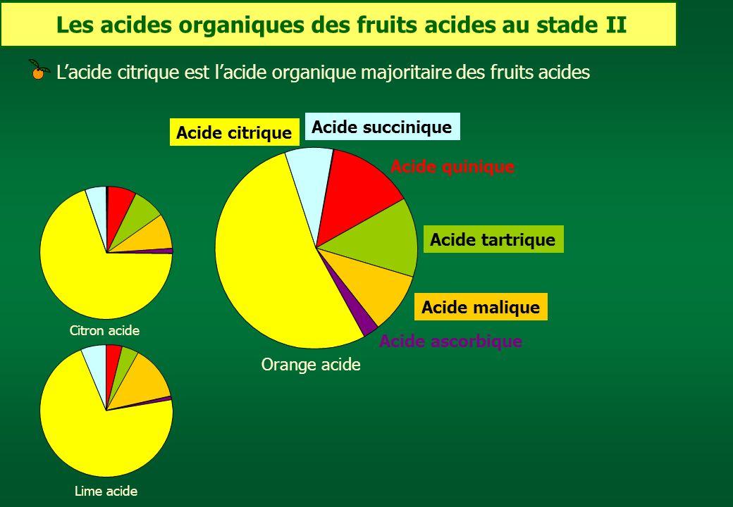 Les acides organiques des fruits acides au stade II
