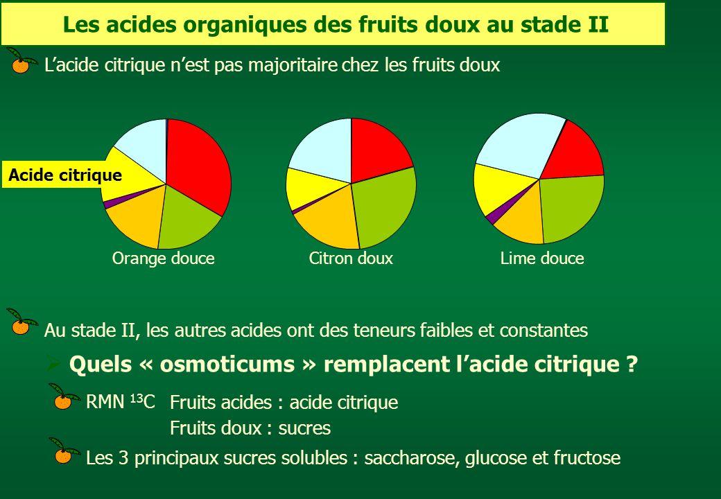 Les acides organiques des fruits doux au stade II