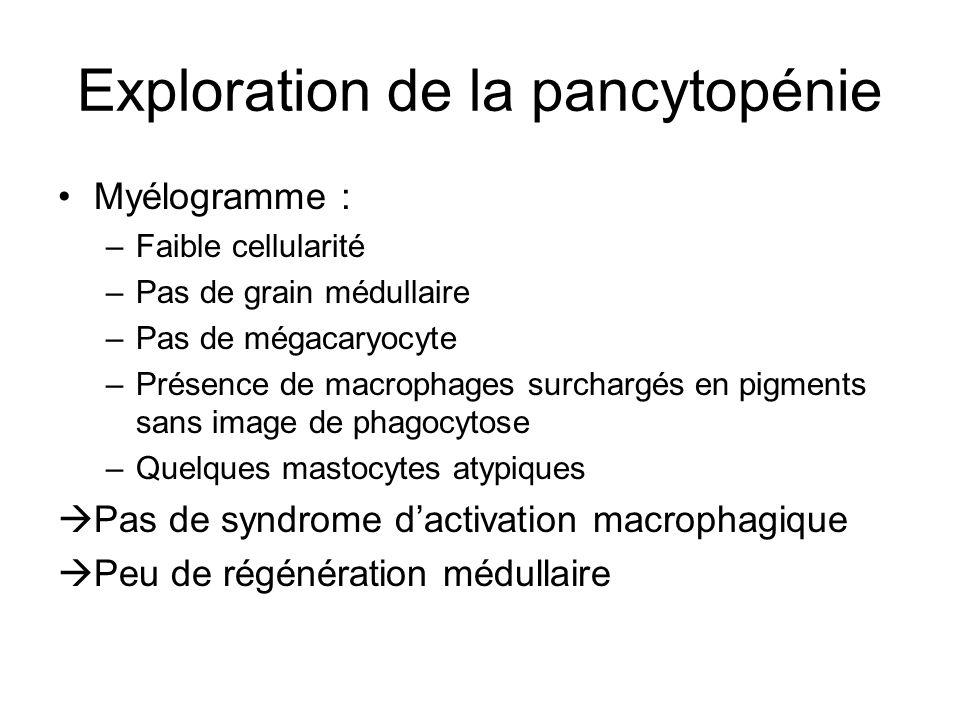 Exploration de la pancytopénie