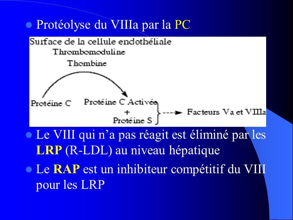 Protéolyse du VIIIa par la PC