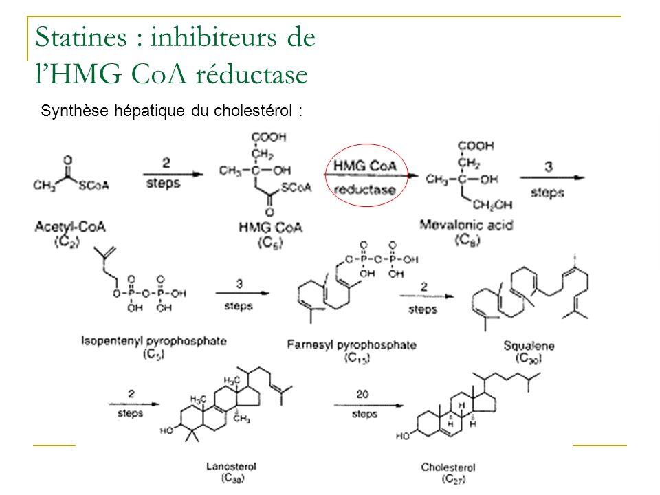 Statines : inhibiteurs de l'HMG CoA réductase