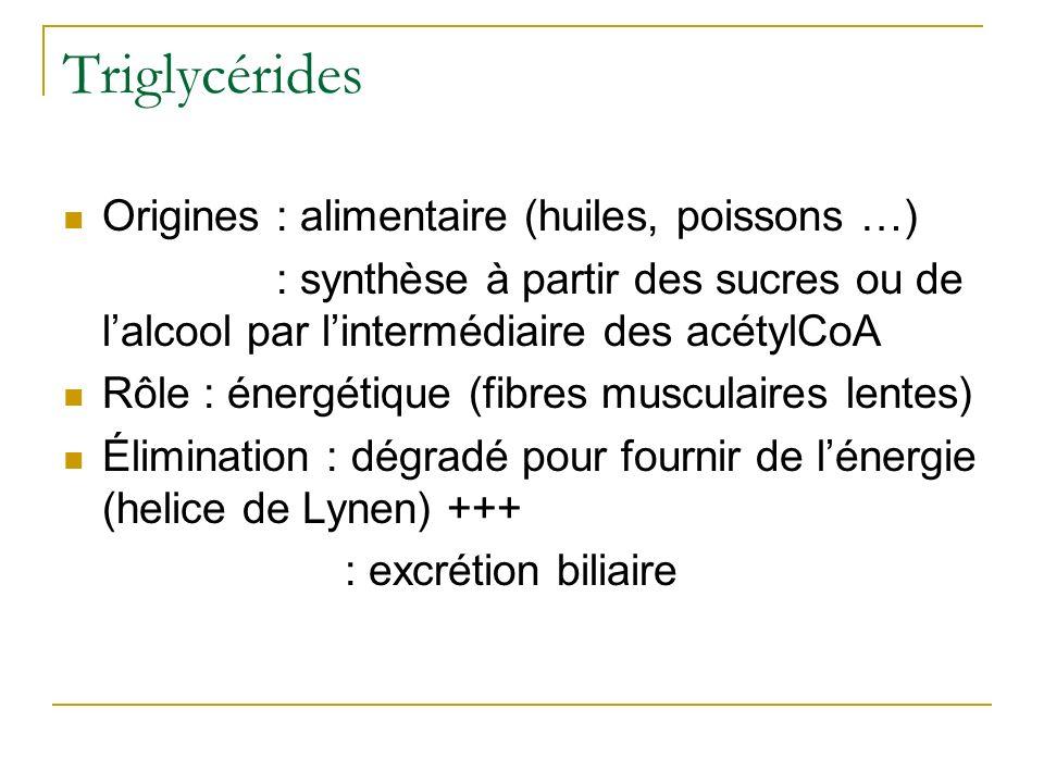Triglycérides Origines : alimentaire (huiles, poissons …)