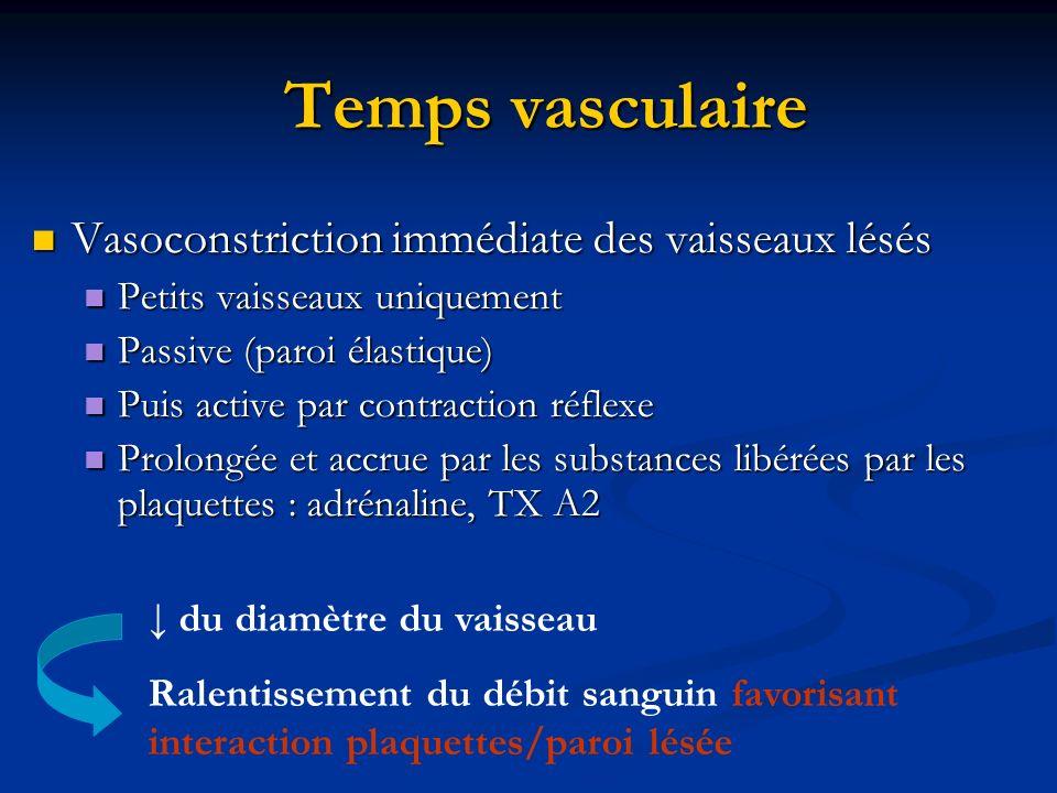 Temps vasculaire Vasoconstriction immédiate des vaisseaux lésés