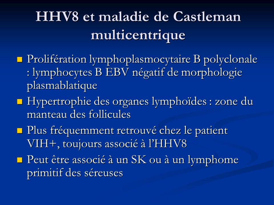 HHV8 et maladie de Castleman multicentrique