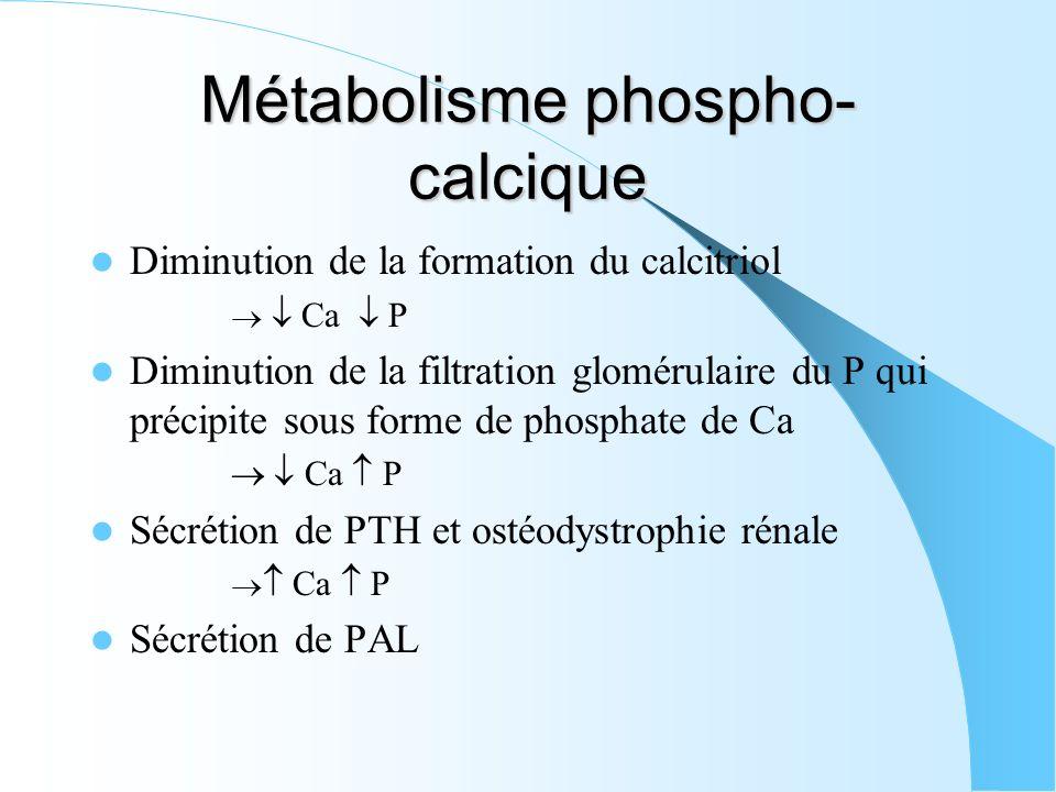 Métabolisme phospho-calcique