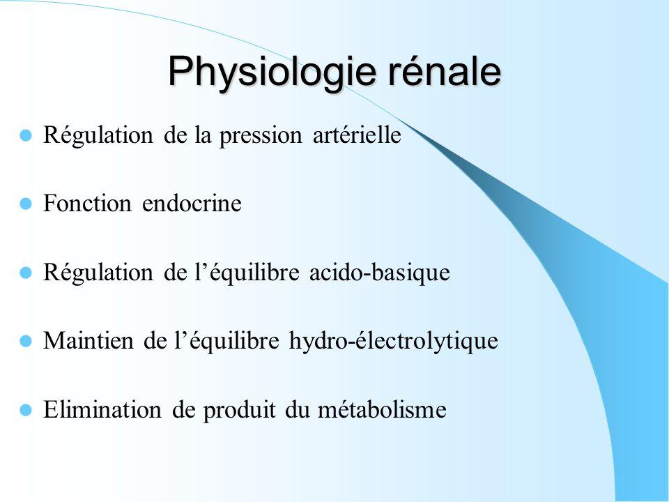Physiologie rénale Régulation de la pression artérielle