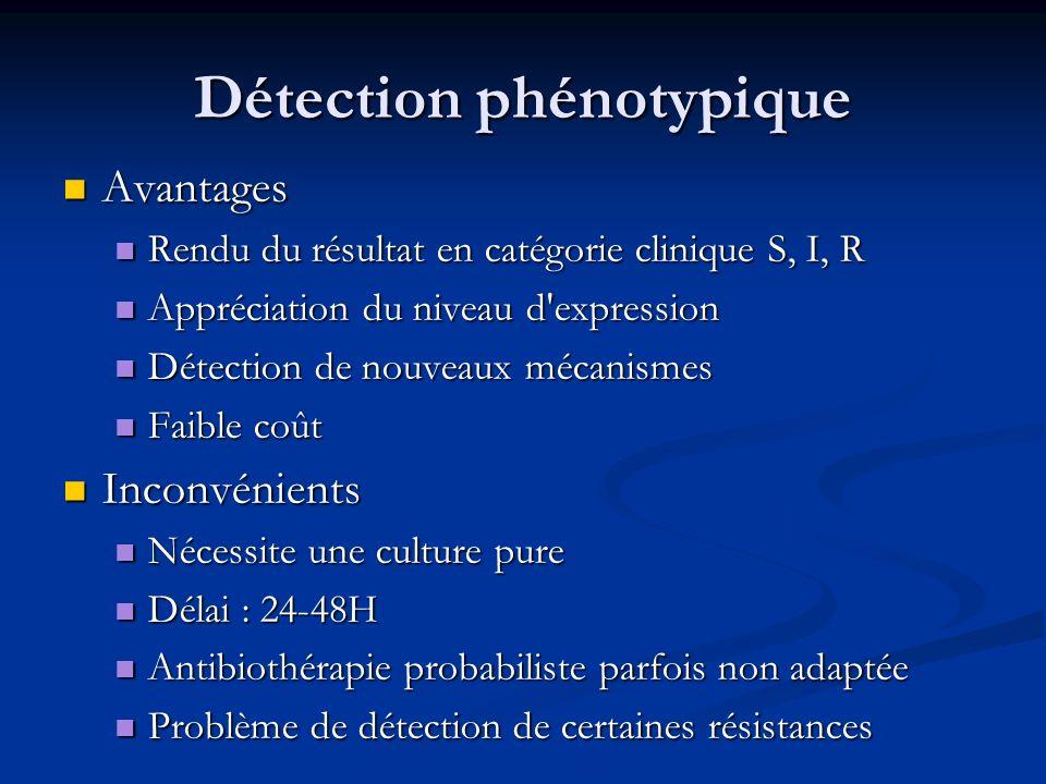 Détection phénotypique