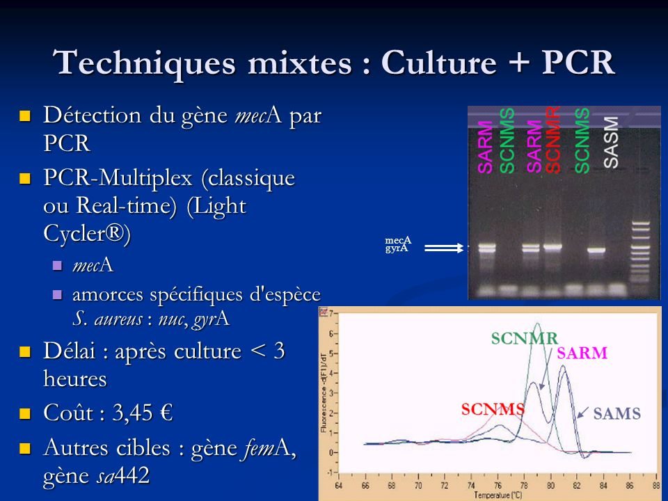 Techniques mixtes : Culture + PCR
