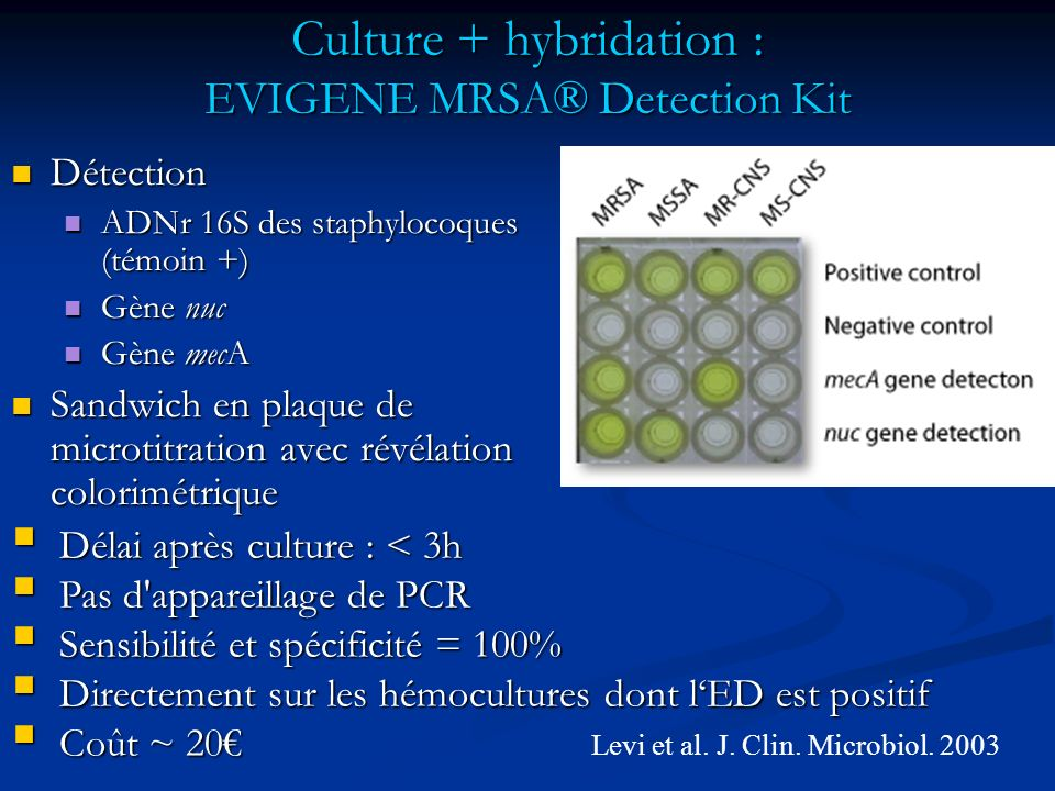 Culture + hybridation : EVIGENE MRSA® Detection Kit