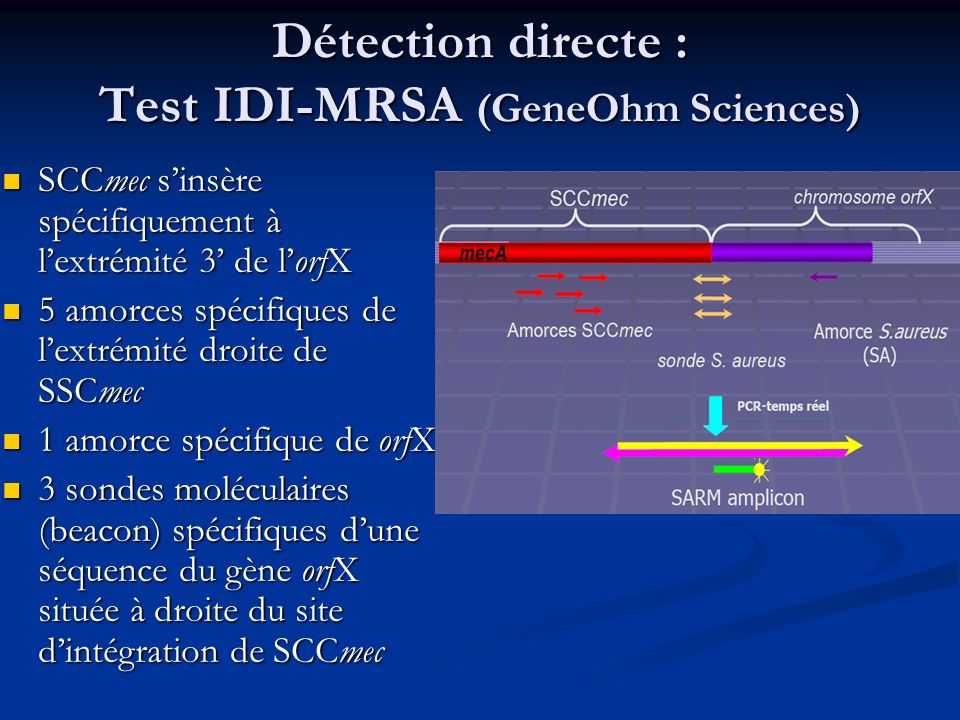Détection directe : Test IDI-MRSA (GeneOhm Sciences)