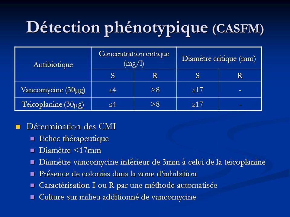 Détection phénotypique (CASFM)