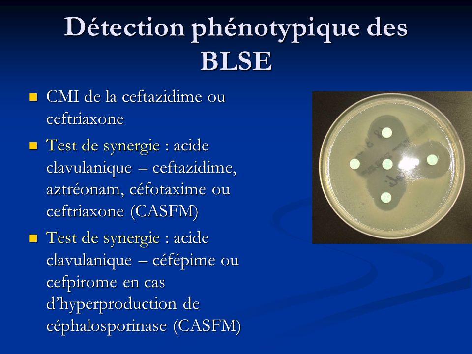 Détection phénotypique des BLSE