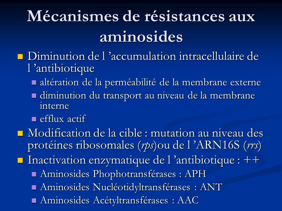 Mécanismes de résistances aux aminosides