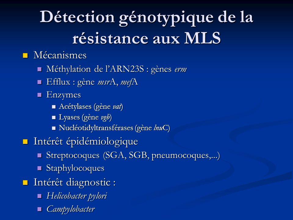 Détection génotypique de la résistance aux MLS