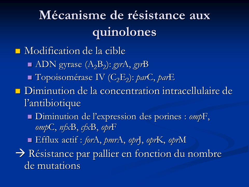 Mécanisme de résistance aux quinolones