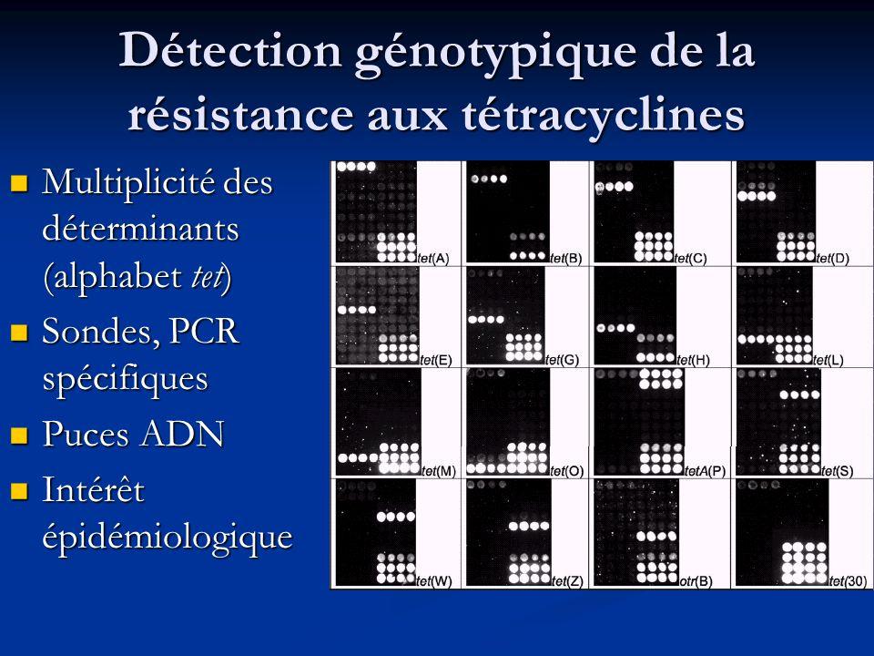 Détection génotypique de la résistance aux tétracyclines