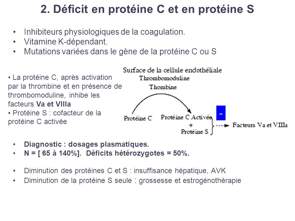 2. Déficit en protéine C et en protéine S