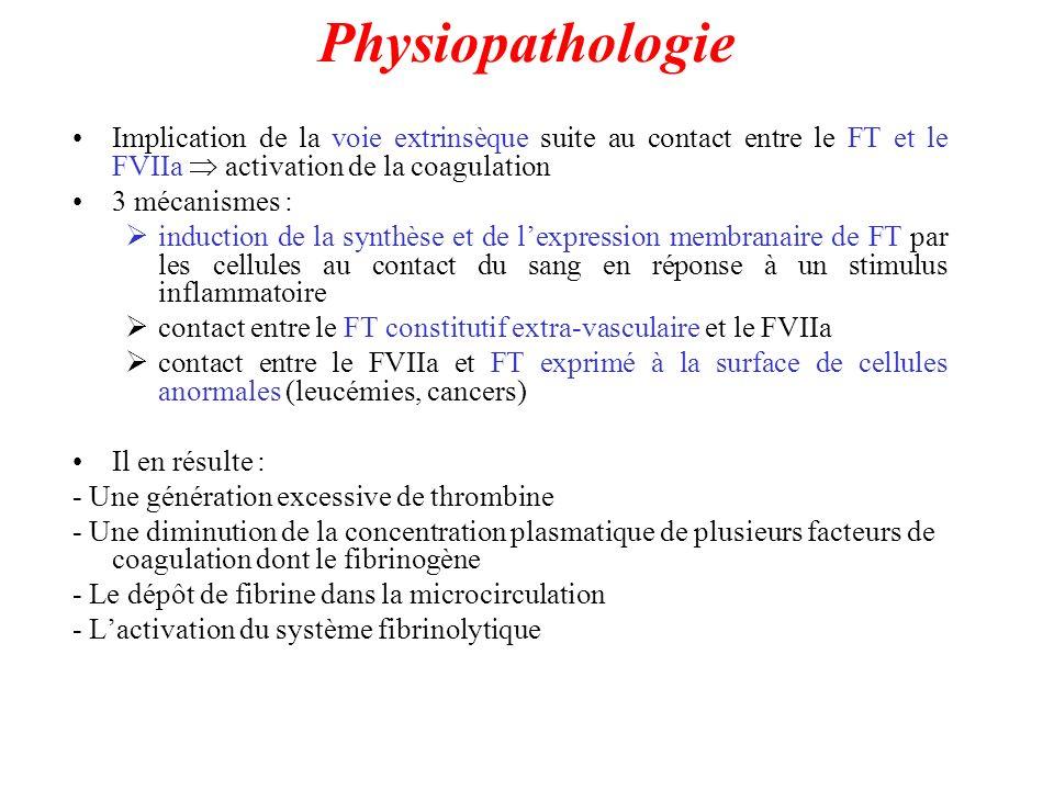 Physiopathologie Implication de la voie extrinsèque suite au contact entre le FT et le FVIIa  activation de la coagulation.