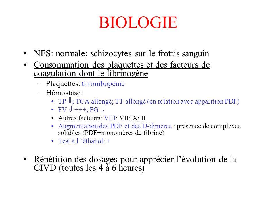 BIOLOGIE NFS: normale; schizocytes sur le frottis sanguin