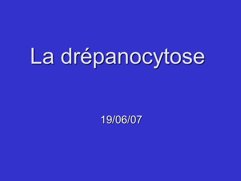La drépanocytose 19/06/07 Conseils de réalisation