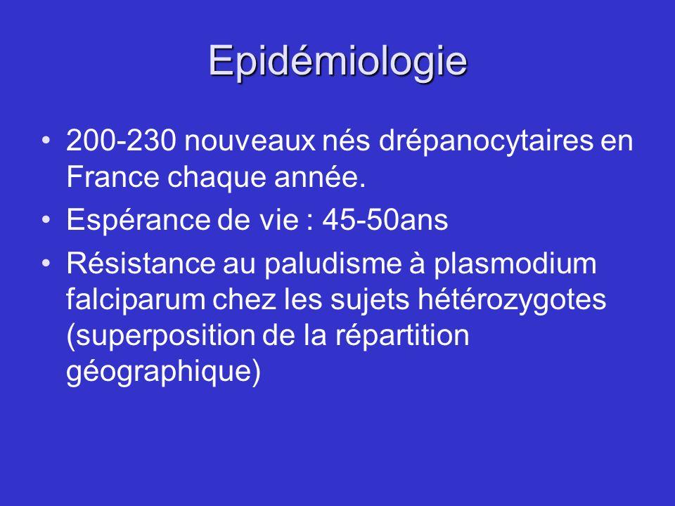 Epidémiologie 200-230 nouveaux nés drépanocytaires en France chaque année. Espérance de vie : 45-50ans.