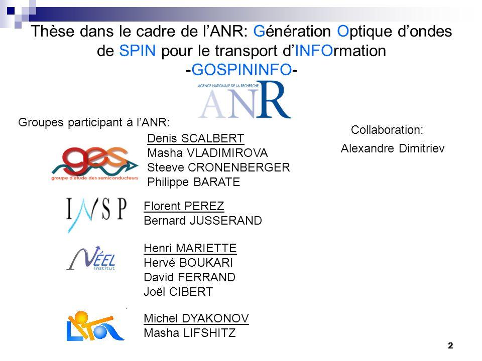 Thèse dans le cadre de l'ANR: Génération Optique d'ondes de SPIN pour le transport d'INFOrmation -GOSPININFO-