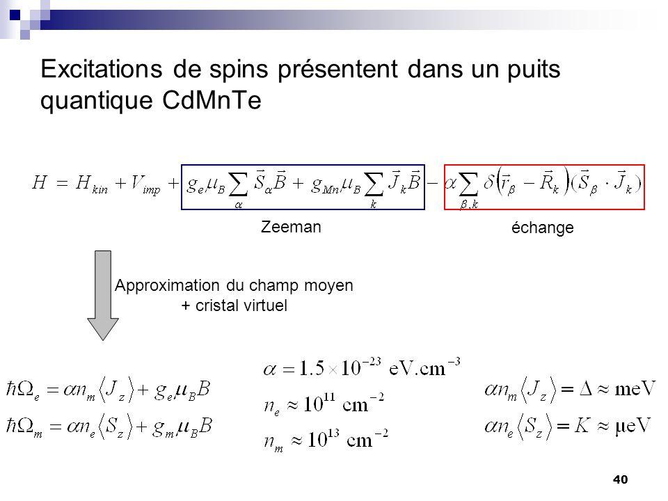 Excitations de spins présentent dans un puits quantique CdMnTe