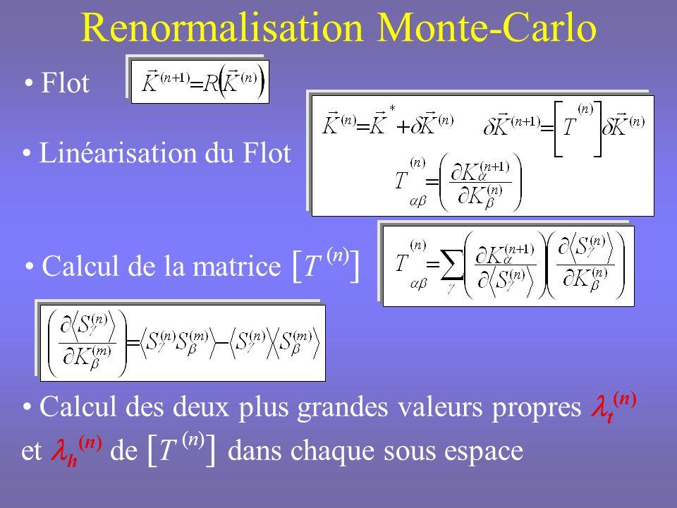 Renormalisation Monte-Carlo