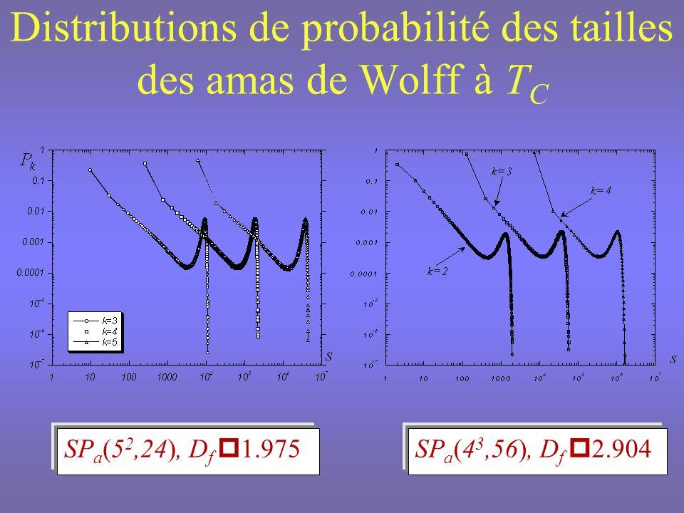 Distributions de probabilité des tailles des amas de Wolff à TC